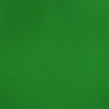 Expotapijt groen / m2