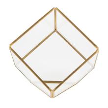 Terrarium Cube